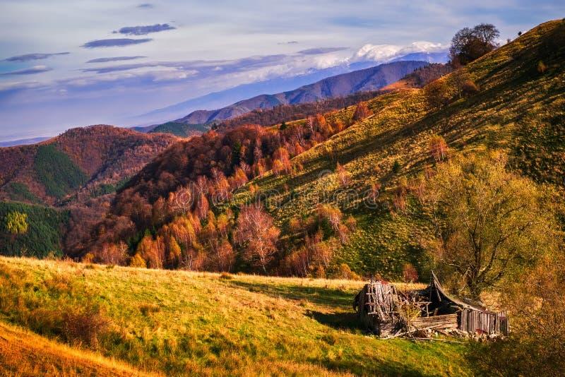 Höstplats med den gamla övergivna träladugården och rumänska Fagaras royaltyfri bild