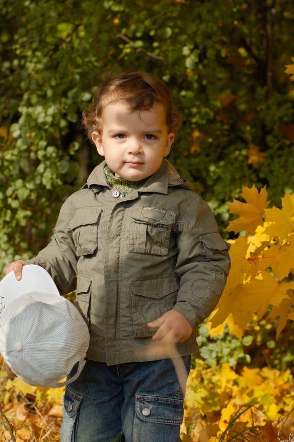 höstpojke little park royaltyfria bilder