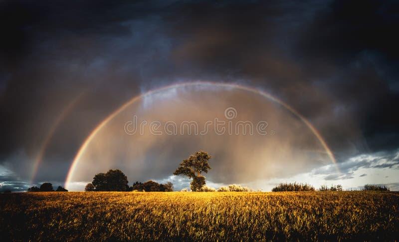 Höstregn i aftonen och full regnbåge i fälten ovanför träd royaltyfria foton