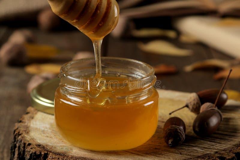 Höstsammansättning med honungnärbild och ekollonar på en träställning på en trätabell royaltyfri fotografi