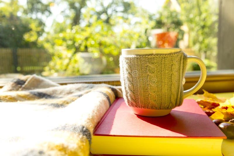 Höstsidor, bok, kastanj, halsduk och kopp av varm choklad f arkivfoton