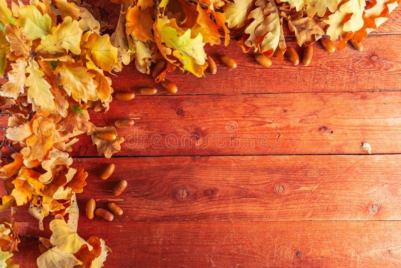 Höstsidor och ekollonar på lantlig träbakgrund Nedgångbakgrund med kopieringsutrymme arkivfoto
