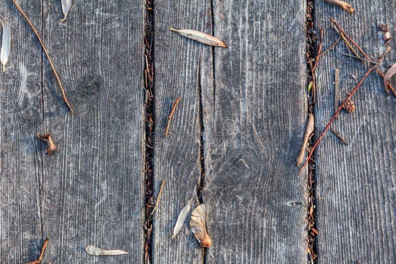 Höstsidor på gamla träsvarta bräden royaltyfria bilder