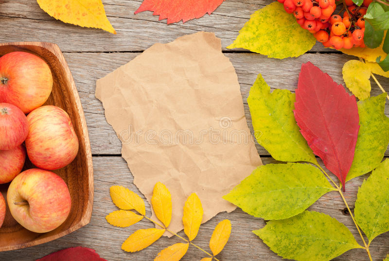 Höstsidor, rönnbär och äpplen över wood bakgrund royaltyfria bilder