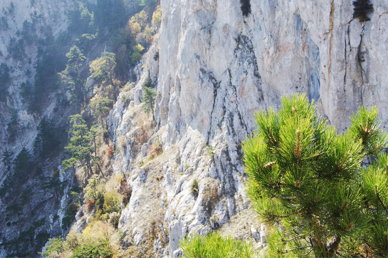 Höstsikt av detPetri berget, Krim royaltyfri foto