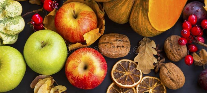 Höstskörd med äpplen, pumpor, squash, plommoner och kastanjer arkivbilder