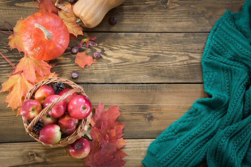 Höstskörd, pumpa, äpplen i korg, färgrika höstsidor på träbräde falllivstid fortfarande Top beskådar royaltyfri fotografi