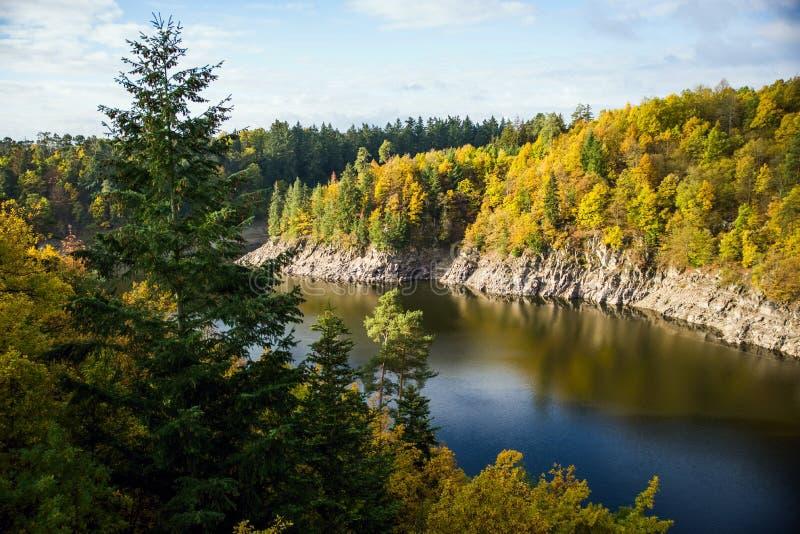Höstskoglandskap med floden royaltyfria foton