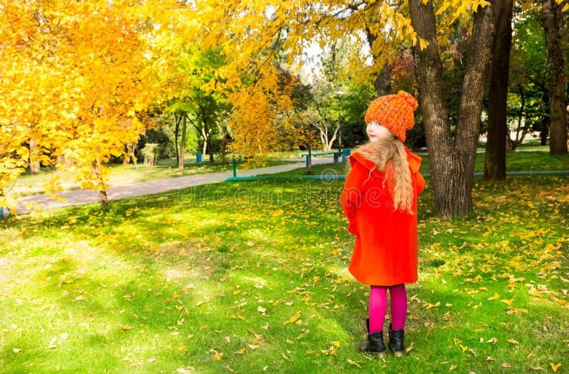 Höststående av det härliga barnet Lycklig liten flicka med sidor i parkera i nedgång royaltyfria bilder