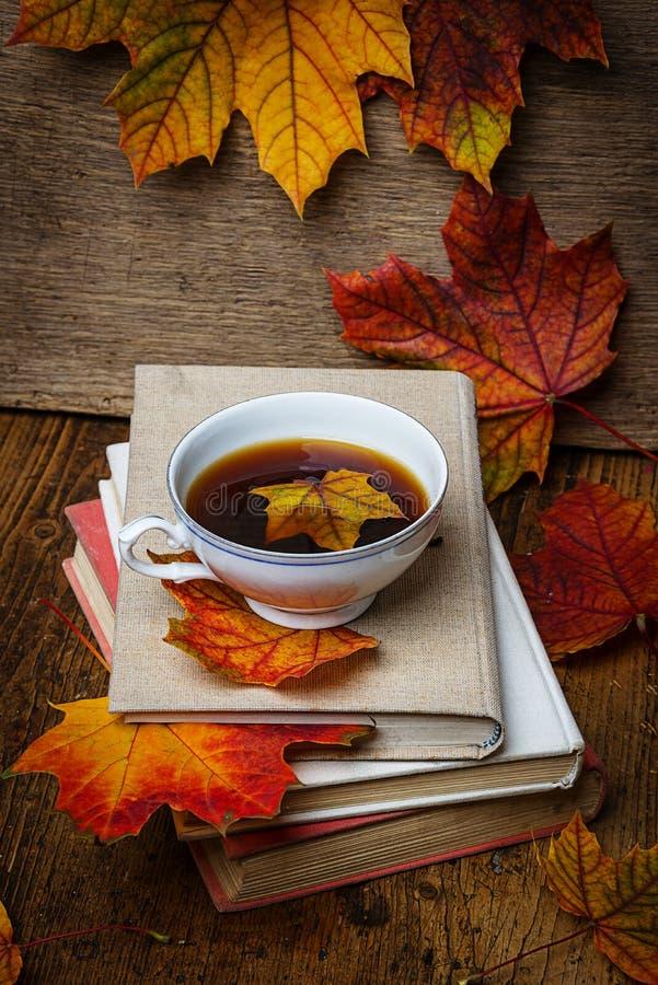 Höststilleben med en kopp te fotografering för bildbyråer