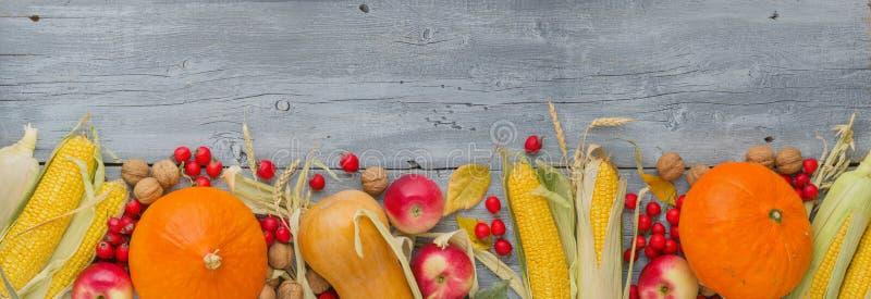 Höststilleben med pumpa, äpplen, havre, muttrar och sidor på grå trätabellbakgrund för tappning, royaltyfri bild