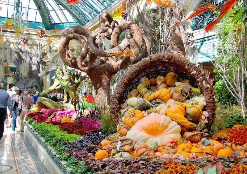Hösttema i ett växthus på det Bellagio hotellet i Las Vegas royaltyfri fotografi
