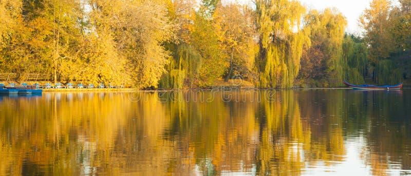 Höstträd på höst sjön royaltyfria bilder