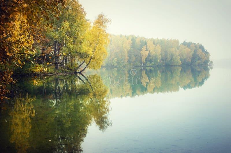 Höstträd som reflekterar på sjön arkivfoto