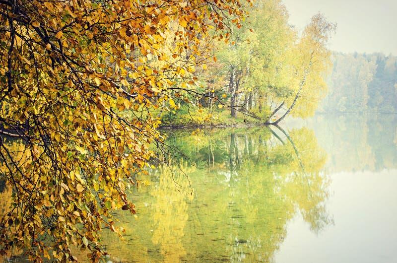 Höstträd som reflekterar på sjön royaltyfri fotografi