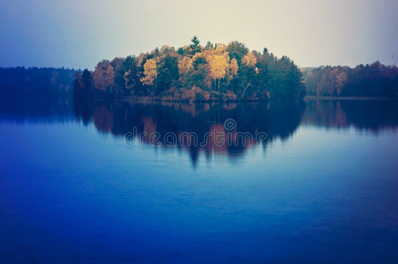 Höstträd som reflekterar på sjön arkivbild