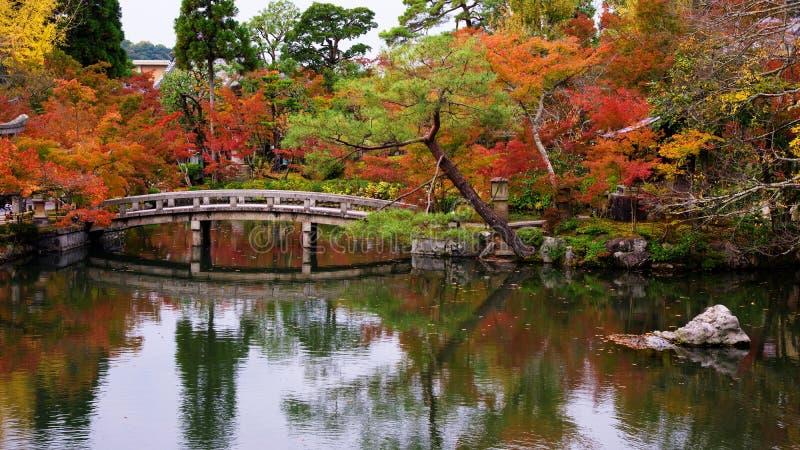 Höstträdgård på den Eikando templet, Kyoto royaltyfri bild
