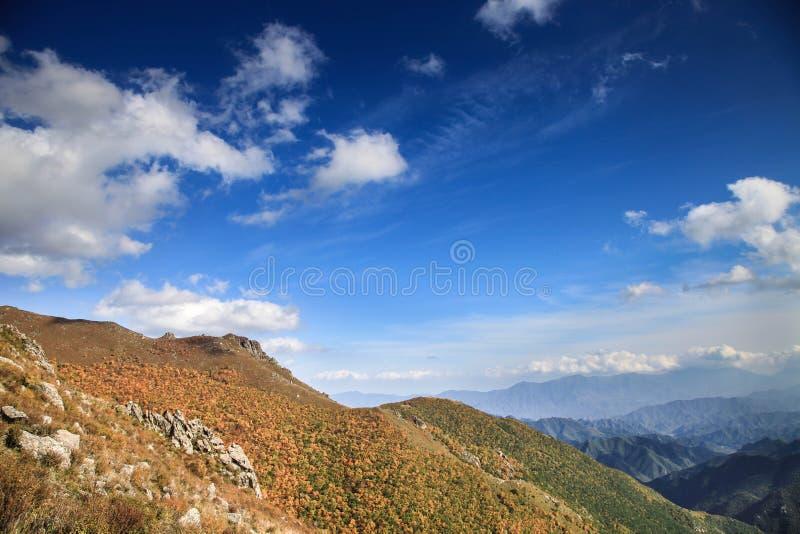 Höstvädret i berget med grumlig blå himmel och många gula träd på stenbergen royaltyfri foto