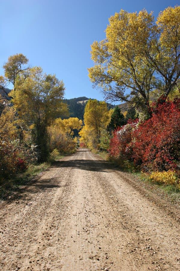 Download Höstväg arkivfoto. Bild av grus, yellow, wyoming, trees - 288800