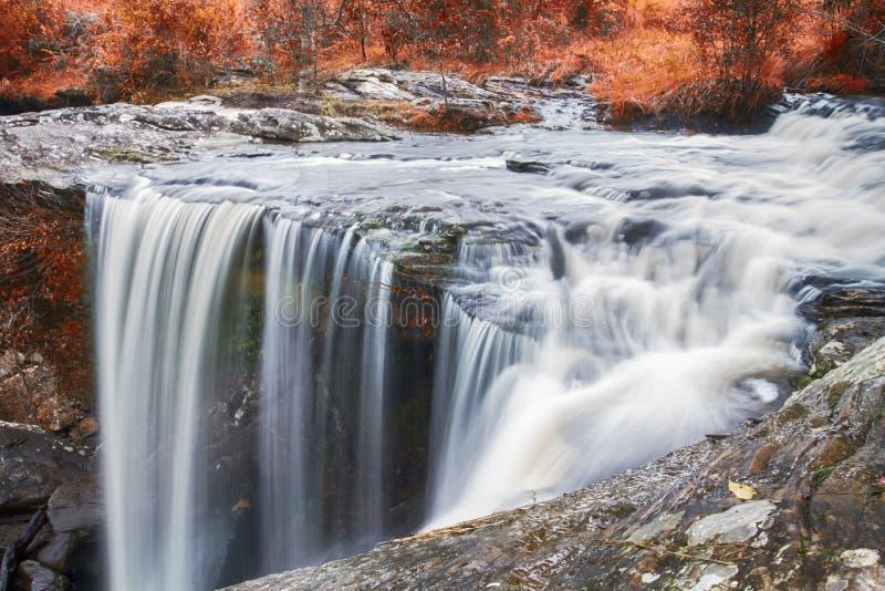 Höstvattenfall i djup skog royaltyfri foto