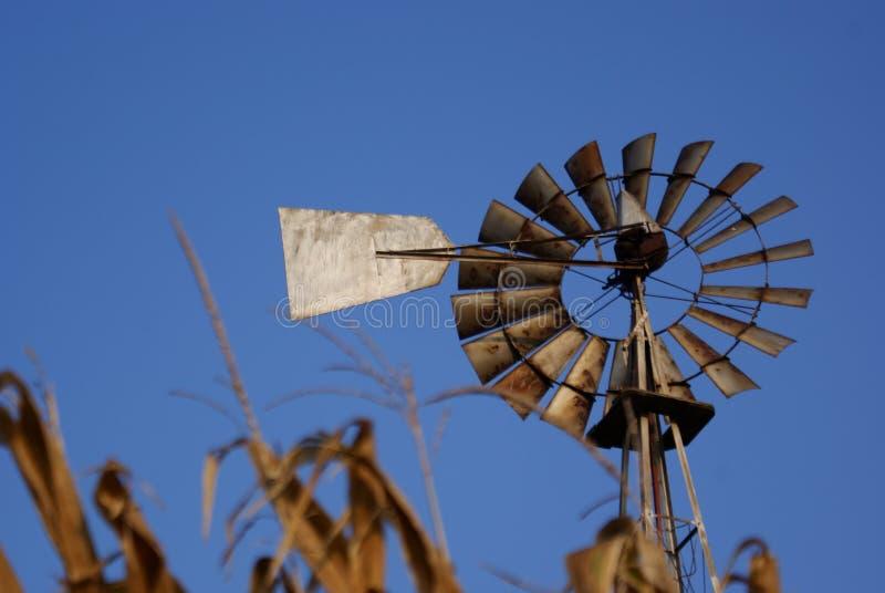höstwindmill royaltyfria bilder