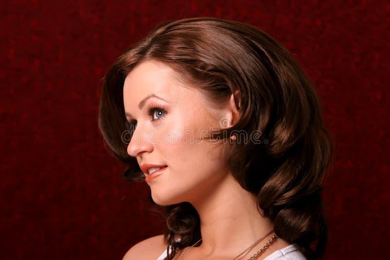 Hübsche Brunettefrau stockbild