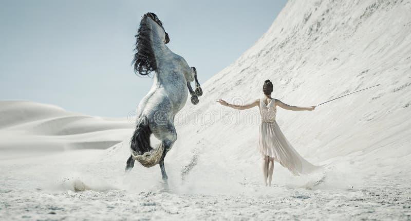 Hübsche Dame mit enormem Pferd auf der Wüste stockfotografie