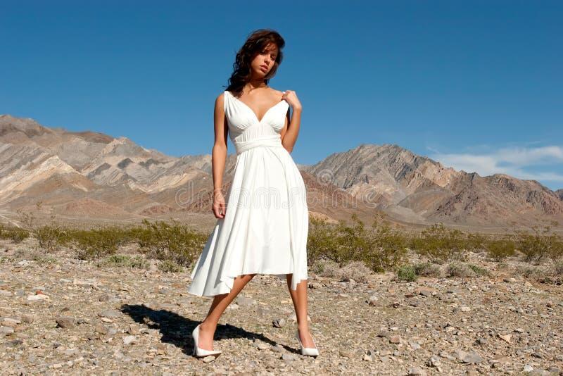 Hübsche Frau in der Wüste stockfotografie