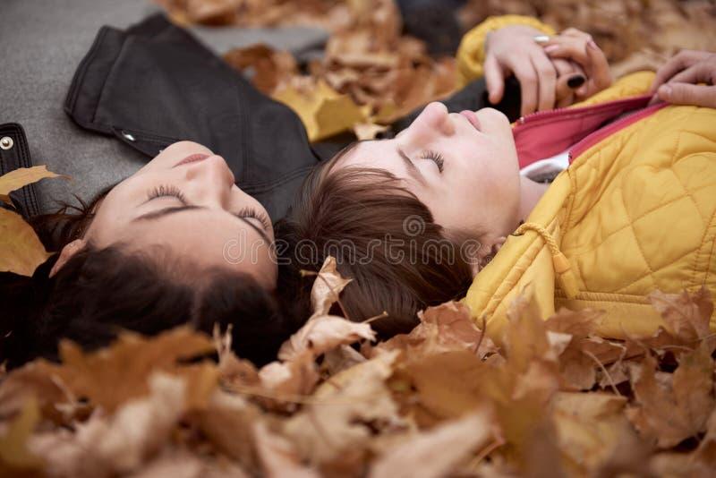 Hübsche Frau und jugendlich Mädchen werfen im Herbstpark auf Sie liegen auf gefallenen Blättern Schöne Landschaft an der Herbstsa stockbilder