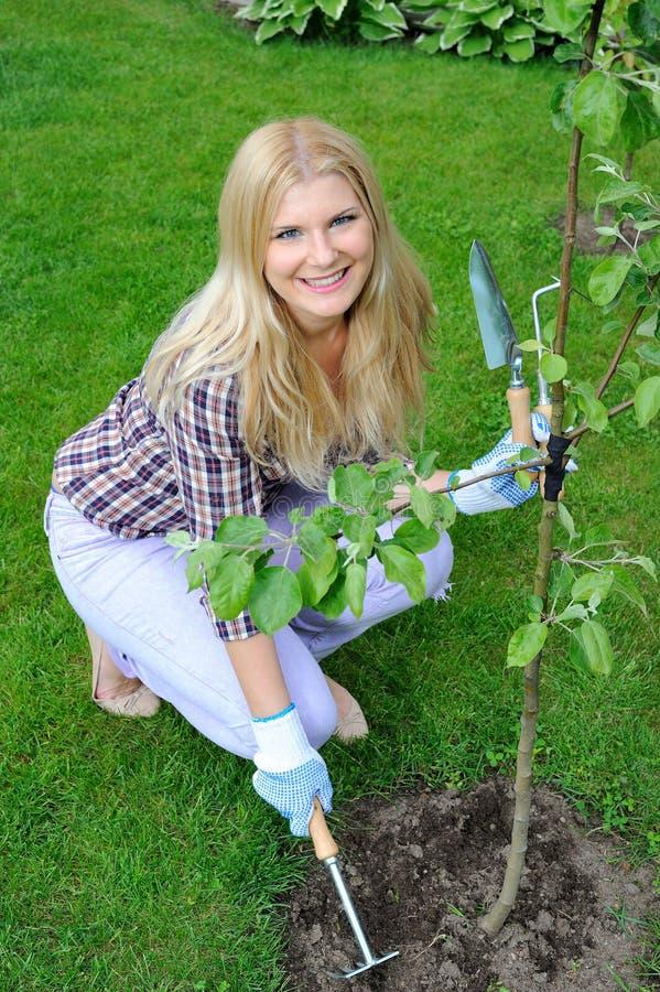 Hübsche Gärtnerfrau mit Gartenarbeithilfsmitteln stockfotos