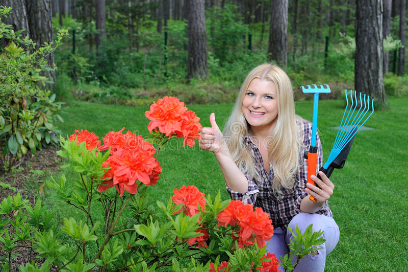 Hübsche Gärtnerfrau mit rotem Blumenbusch stockfoto