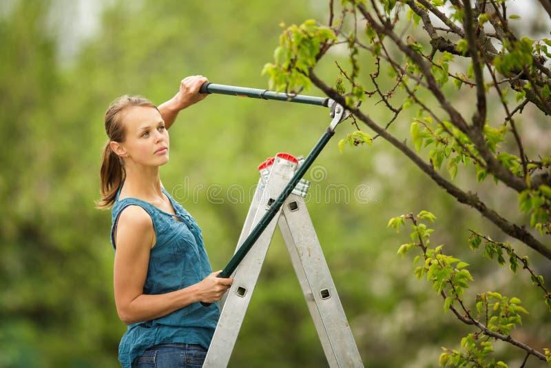 Hübsche, junge Frau, die in ihrem Obstgarten/in Garten im Garten arbeitet stockbild