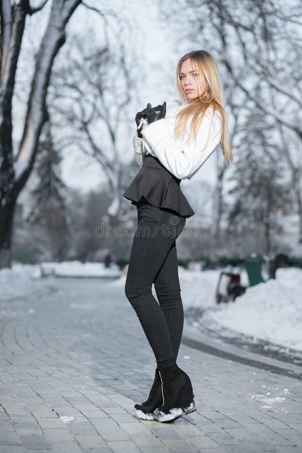 Hübsche junge Frau, die im Winter aufwirft lizenzfreie stockfotos