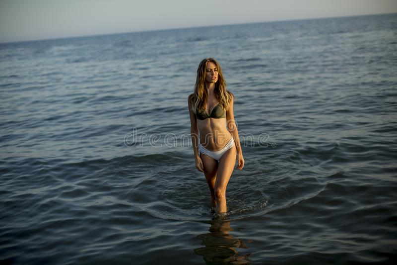 Hübsche junge Frau in Meer stockfoto