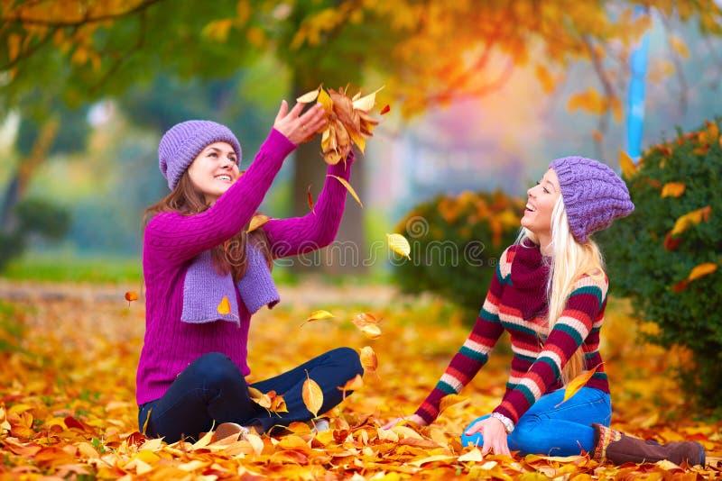 Hübsche Mädchen, Freunde, die Spaß im bunten Herbstpark, die Blätter oben werfend haben stockfoto