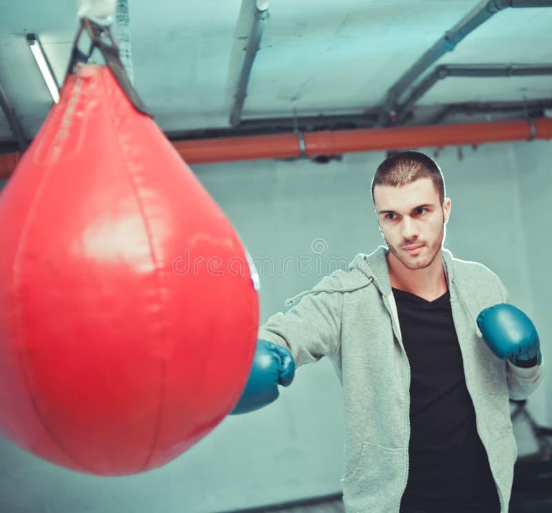 Hübsche männliche Boxerzughandlocher lizenzfreies stockbild