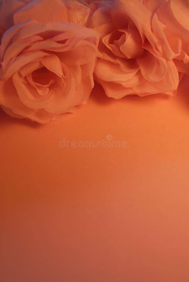 Hübsche Pfirsich-Rosen im Kerzenlicht stockbild