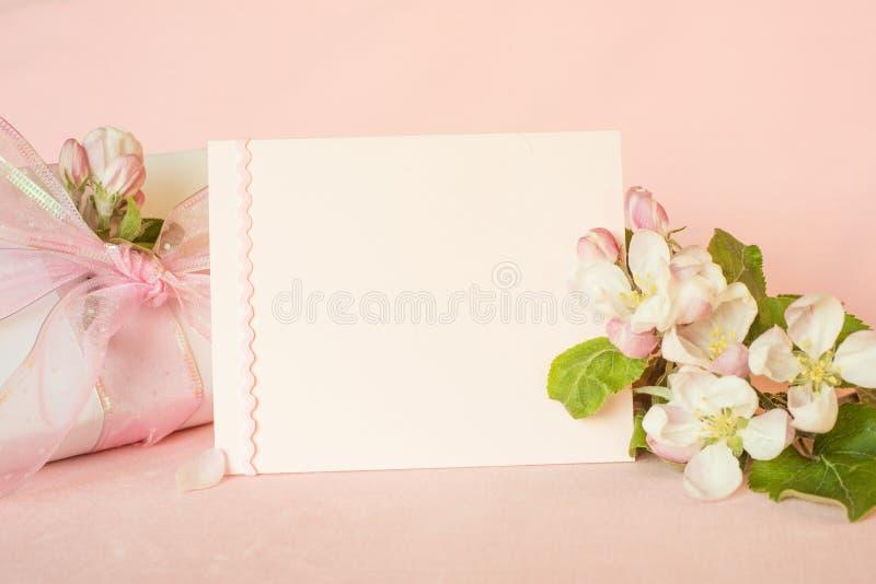 Hübsche pfirsichfarbene rosa Fahne mit leerer Karte und frische Frühlingsapfelblüten mit eingewickeltem Geschenk für Mutter-Tag,  lizenzfreies stockbild
