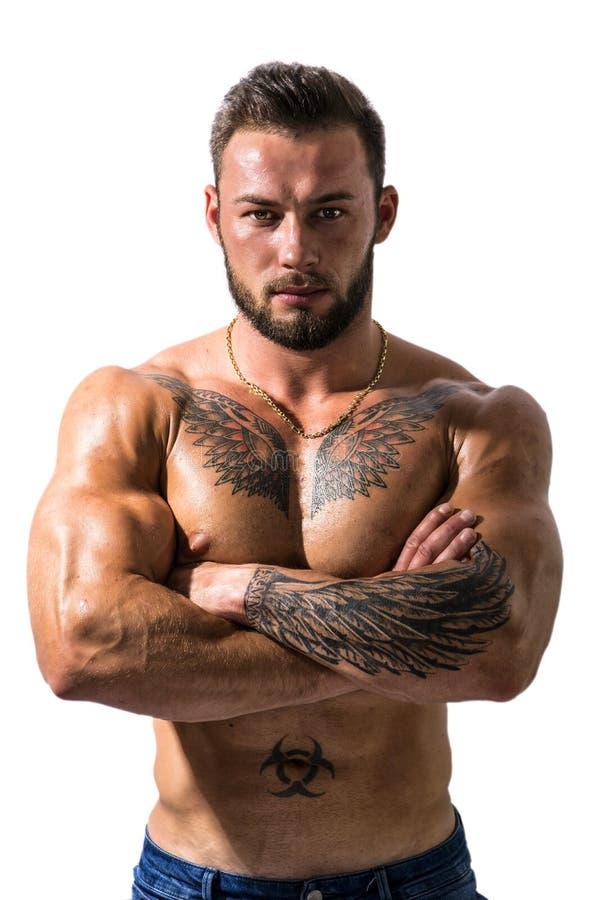 Hübsche schulterfreie muskulöse Mannstellung, lokalisiert stockbilder