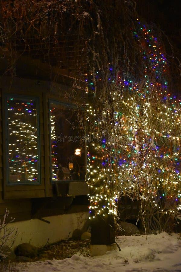 Hübsche Twinkly Weihnachtslichter Herald Holiday Greetings lizenzfreie stockfotografie