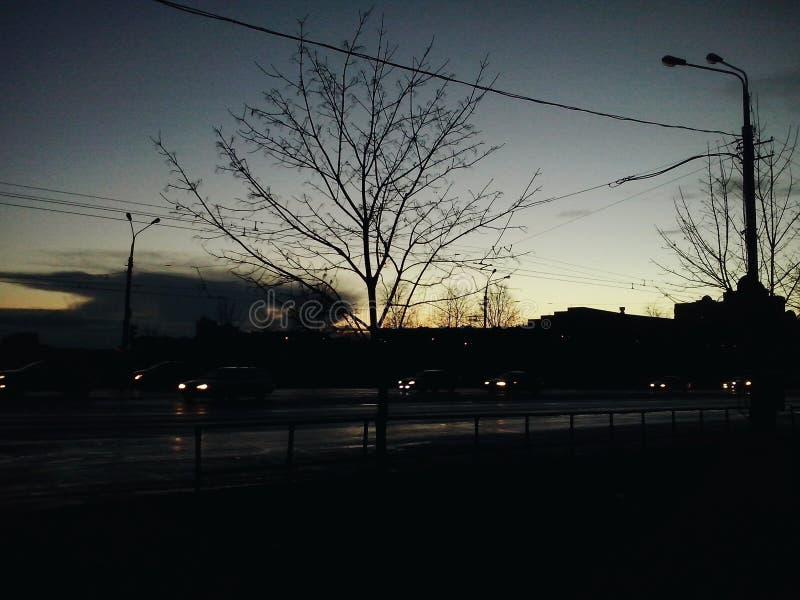 Hübscher Abend stockfotos