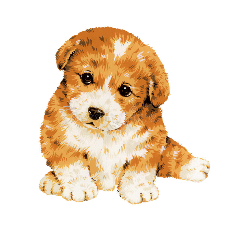 Hübscher Hund vektor abbildung