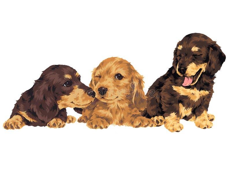 Hübscher Hund stock abbildung