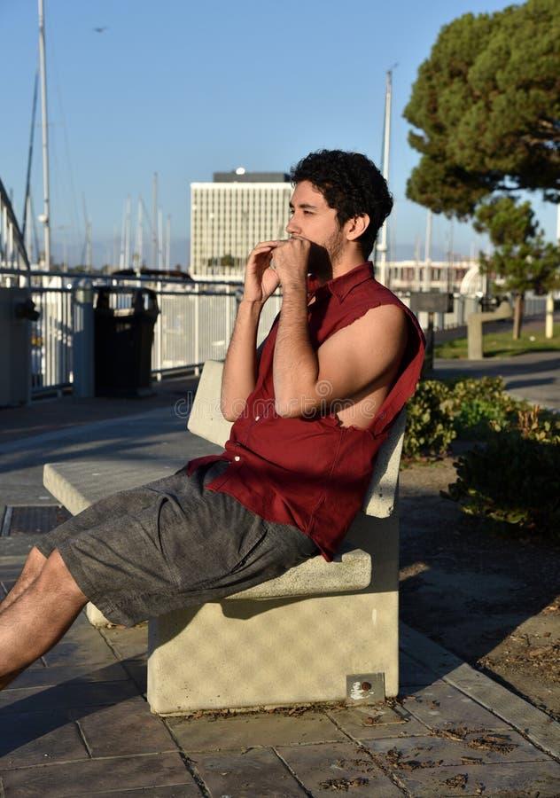 Hübscher junger Mann, der die Harmonika spielt lizenzfreies stockbild