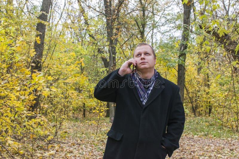 Hübscher junger Mann mit einem Smartphone auf der Straße sprechend im Park und oben schauend Schöner Herbst und viele gelben Blät lizenzfreies stockbild