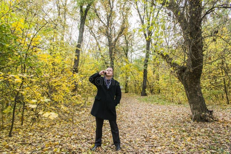 Hübscher junger Mann mit einem Smartphone auf der Straße sprechend im Park und oben schauend Schöner Herbst und viele gelben Blät lizenzfreies stockfoto