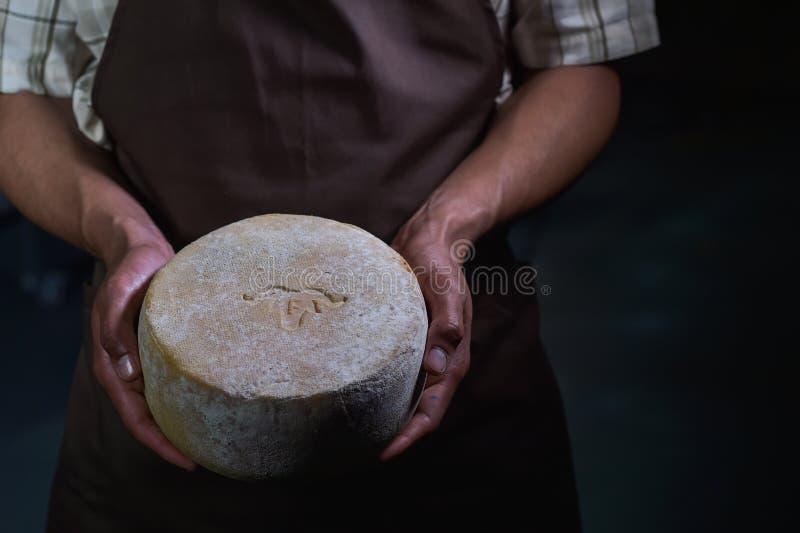 Hübscher Käsehersteller überprüft Käse in seinem Werkstattspeicher stockbild