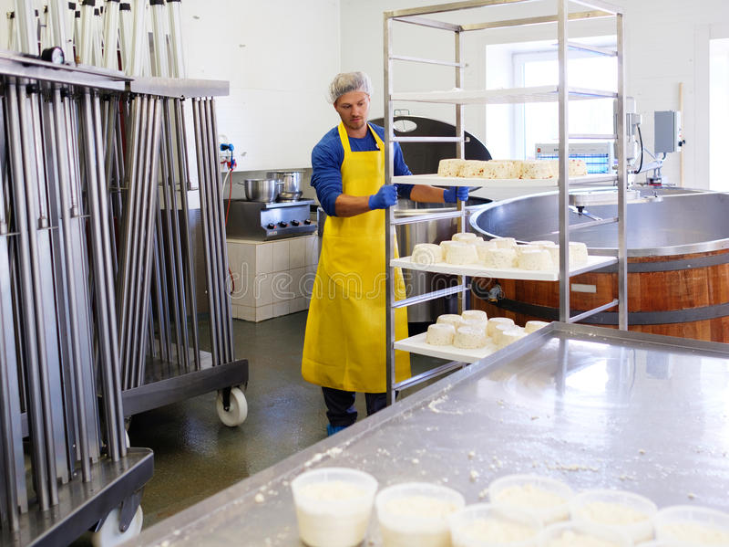 Hübscher Käsehersteller, der Quark in seiner Fabrik macht lizenzfreies stockbild