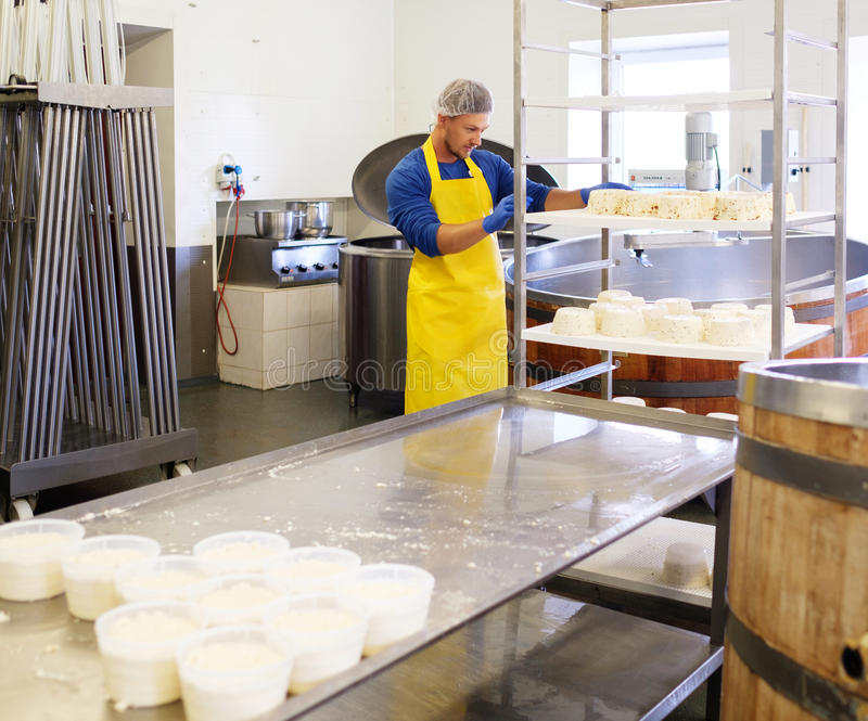 Hübscher Käsehersteller, der Quark in seiner Fabrik macht stockfotografie