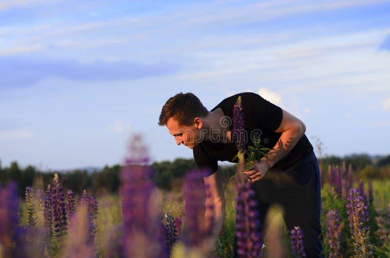 Hübscher Kerl erfasst Blumen auf dem Gebiet stockbilder